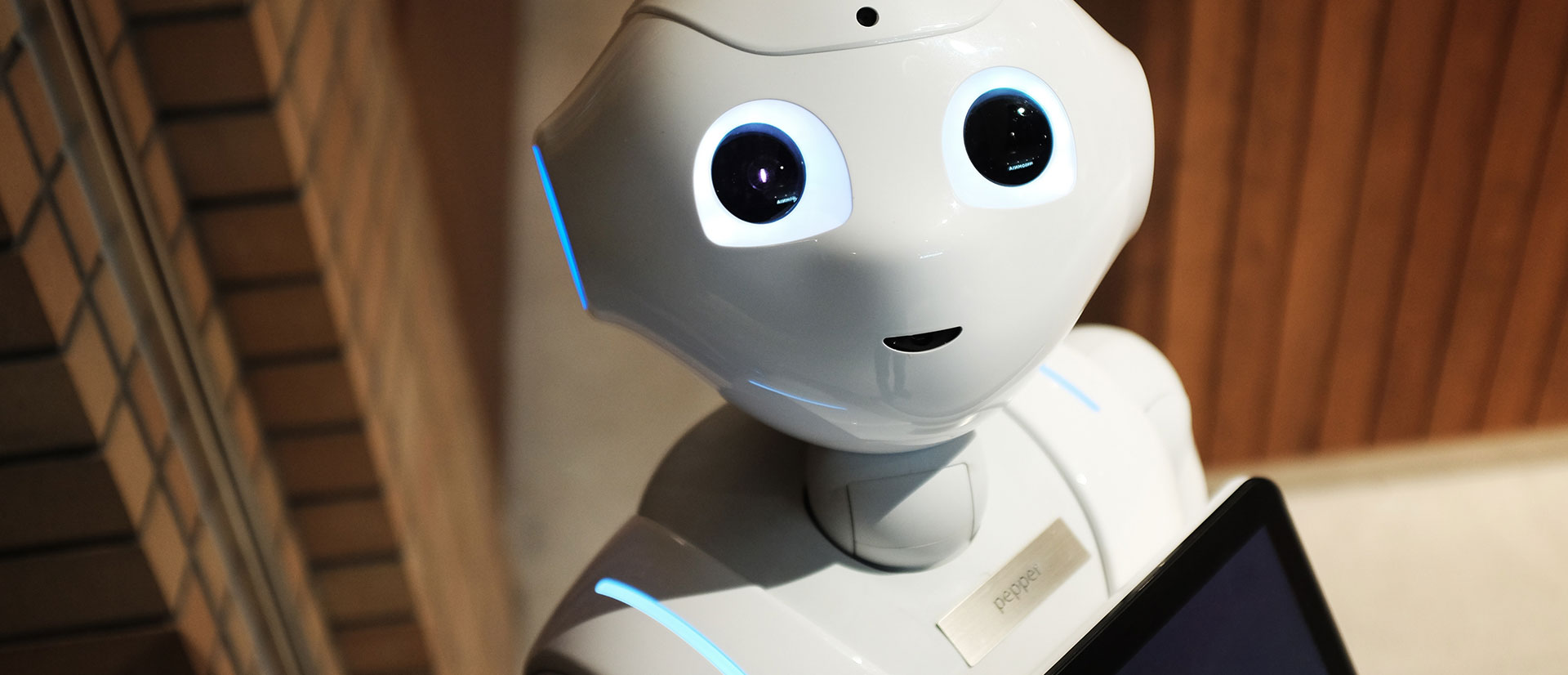 Future of Customer Service Robots- Will They Fully Replace the Human  Interconnect and Touch?   Sastra Robotics